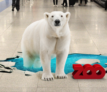 Copenhagen ZOO / Copenhagen Airport – Floor sticker